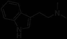 dimetiltriptamin
