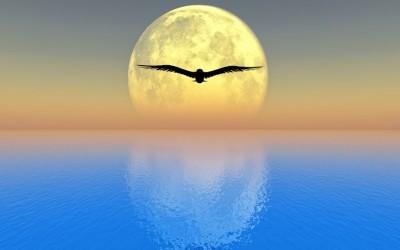 Lélegzetünk élő híd a testünk és a lelkünk között