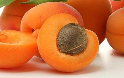 Nyári gyümölcsök slágere a sárgabarack